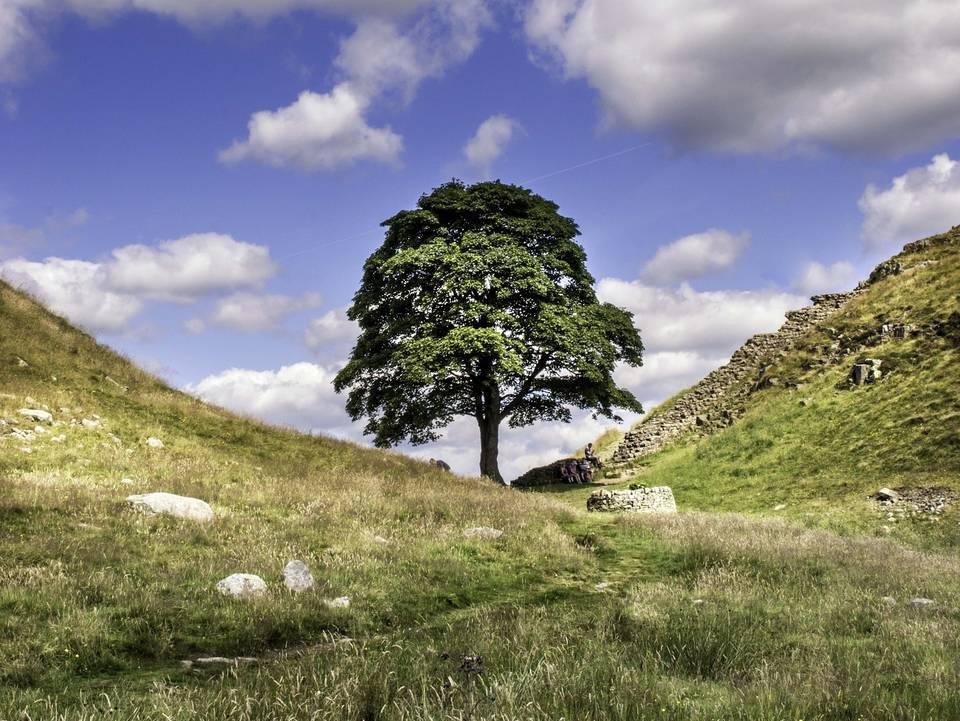 LD:NorthEast Hadrians Wall Challenge